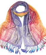 Pashmina shawl multi colour
